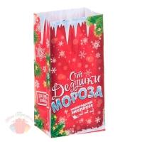 Пакет подарочный без ручек От Дедушки Мороза 10 × 19,5 см