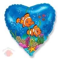 Рыбки-клоуны Clown fish 18/48 см