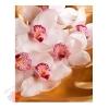 Пакет КАРТОН-БОЛЬШОЙ Орхидея на золоте, 32*40 см