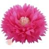Бумажный цветок 50 / 23 см амарантовый бежевый