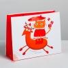 Пакет ламинированный горизонтальный «Котик-звезда», MS 23 × 18 × 8 см