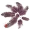 Перья Жемчужные, Пыльная роза, 80 шт.